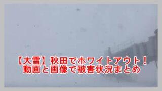 秋田でホワイトアウト