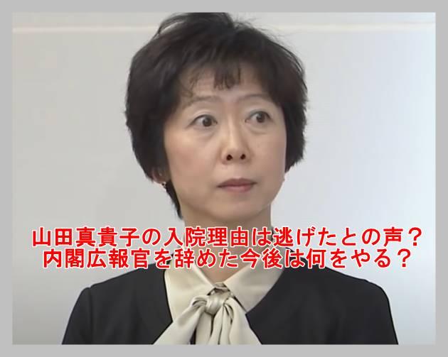 山田真貴子
